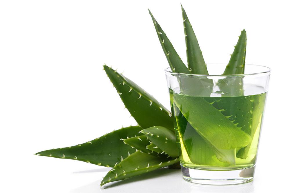 Medicine. Aloevera on a white background